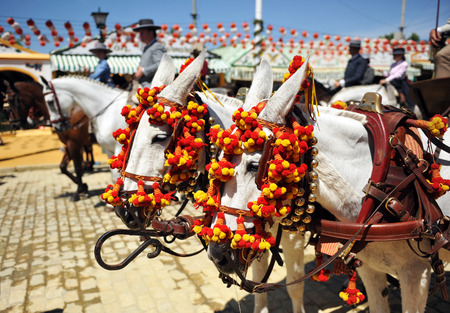 horse and carriage: Horse carriage at Sevilla Fair, Fiesta, Spain Editorial