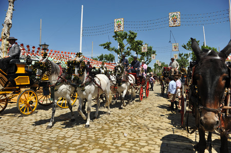 feast: Ride of horses carriage at the fair in Seville, Andalusian feast