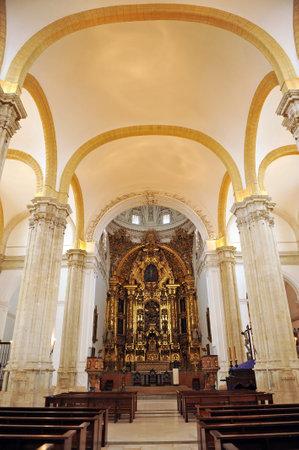 collegiate: Inside of the Collegiate of Osuna, Seville province, Spain