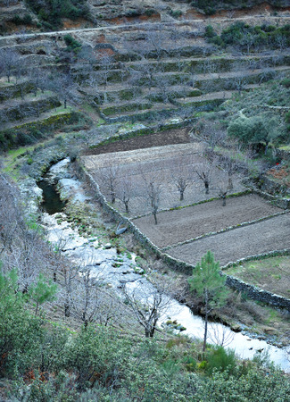 The Hurdano River Valley, Orchards and terraced fields, Las Hurdes, Caceres Province, Extremadura, Spain