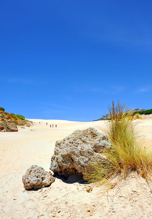 come up to: Going up to the dune of Bolonia, Costa de la Luz, Cadiz province, Andalusia, Spain