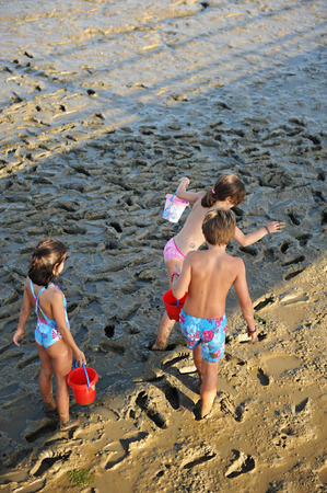 Children playing in the mud, summer vacation on the beach