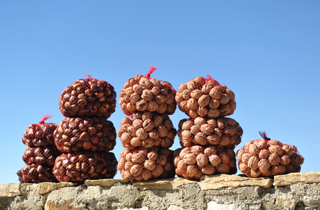 Harvest of chestnuts and walnuts