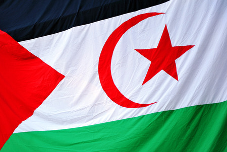 democratic: Flag of the Sahrawi Arab Democratic Republic SADR