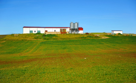 Farm setting, cereal fields in southern Spain Stock Photo