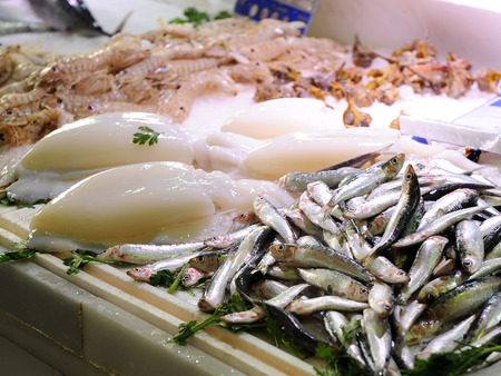 fish selling: Fresh sardines and cuttlefish, selling fresh fish at the fishmonger Stock Photo
