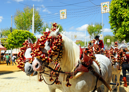 Horse carriage at Seville, Fiesta in Spain Stock Photo