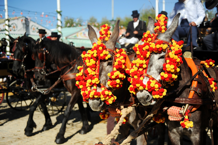 Horse carriage at the Seville Fair, Andalusia, Spain
