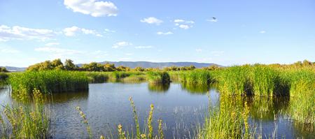 Parque Nacional de Tablas de Daimiel, Castilla la Mancha, España Foto de archivo - 79373461