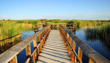 Wooden walkway, Tablas de Daimiel National Park, Castilla la Mancha, Spain