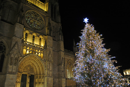 Christmas tree in front of Cathedral of Saint Andrew, Bordeaux, France 版權商用圖片 - 92967628