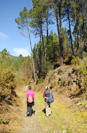 Two women pilgrims on the Camino de Santiago, Camino Sanabres from Campobecerros towards the town of Laza, Orense province, Spain
