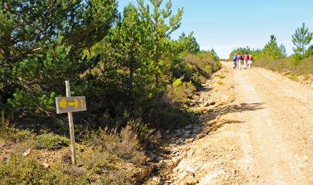 Pilgrims on the Camino de Santiago, Camino Sanabres from Campobecerros towards the town of Laza, Orense province, Spain