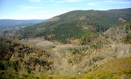 Autumn in the mountains of the Camino de Santiago, Camino Sanabres, near Laza, Orense province, Galicia, Spain Standard-Bild