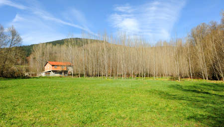 Farm house and forest in Laza, province of Orense, Galicia, northern Spain Standard-Bild