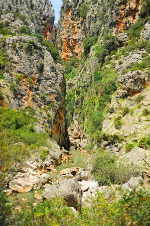 The Canyon of the Buitreras -Canon de las Buitreras- is a famous gorge located at the Alcornocales Natural Park near Cortes de la Frontera. Province of Malaga, Andalusia, Spain Standard-Bild