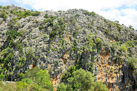 Karst landscape in the Buitreras Canyon famous gorge of the Alcornocales Natural Park, near Cortes de la Frontera. Malaga Province, Andalusia, Spain. Standard-Bild