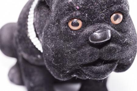 animalitos tiernos: Perro del ornamento. Foto de archivo