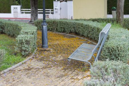 municipal utilities: Iron bench. Stock Photo