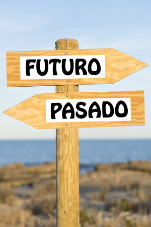 the past: Future, Past in spanish.