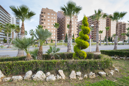 residential tree service: Marina Dor gardens Castellon, Spain.