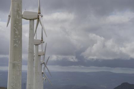 wind farm: