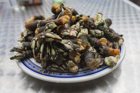 galician: Galician barnacles.