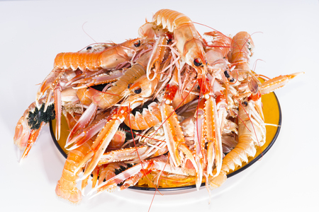decapod: Crawfish.