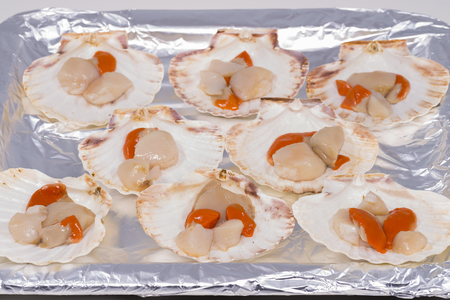 expensive food: Scallops.