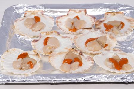 scallops: Scallops.