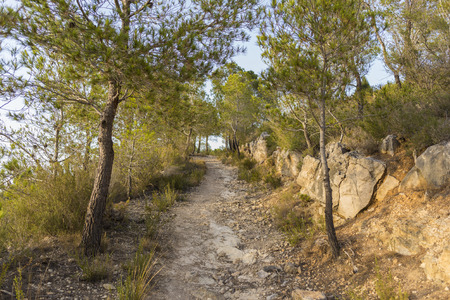 dirt road recreation: Hiking trail. Stock Photo