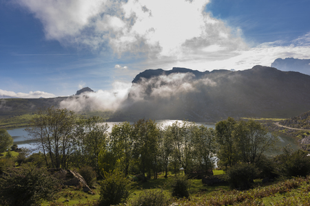 covadonga: Enol lake (Lakes of Covadonga, Asturias -  Spain).
