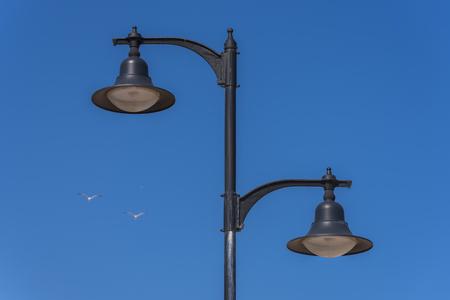 artificial lights: Street light and seagulls.