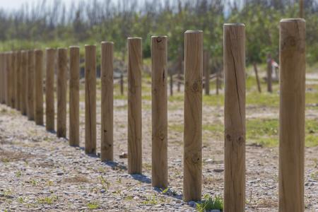clavados: Pilas de madera en una fila.