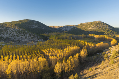 Lobos river canyons (Soria, Spain).