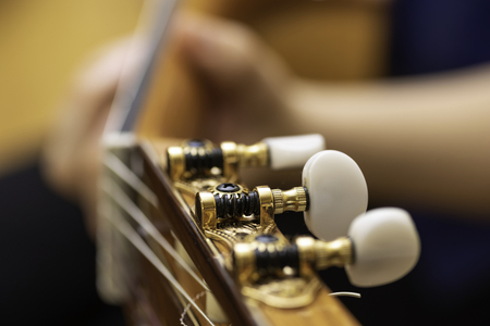 Headstock of a guitar.