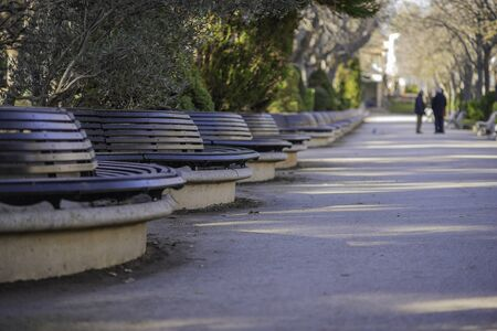 Wooden benches in Alameda de Cervantes park (Soria, Spain).