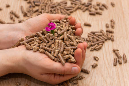 Pellet grains (biomass)