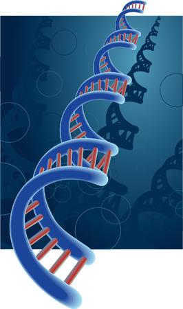 DNA Stock Vector - 5581059