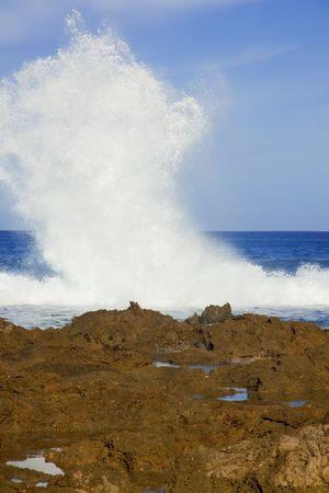 orificio nasal: Grandes olas blancas crash juntos a lo largo de la norte orilla de oahu hawaii durante el d�a.