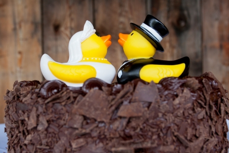 Rubber ducks sit upon chocolate cake as cake toppers at a wedding ceremony and reception  Stock Photo - 16606475