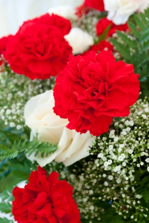 Carnation flowers and baby