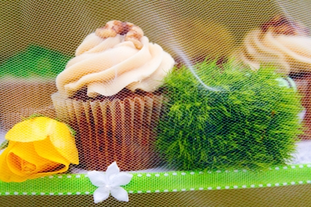A variety of cupcakes from a dessert buffet at a wedding reception. photo