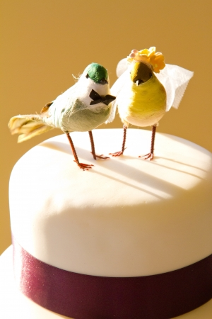 topper: A traditional white wedding cake is topped with craft birds and wrapped in purple ribbon at the bride and grooms reception.