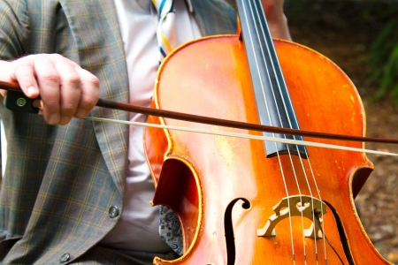 A close-up detail image of a man playing cello or bass at a wedding.