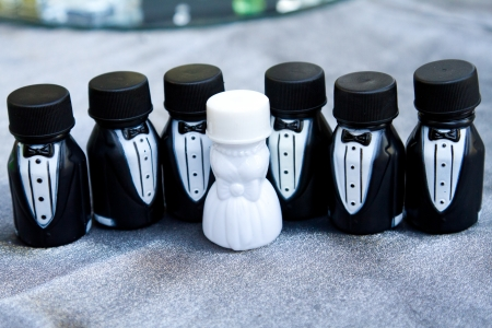 These party favors are containers of bubbles at a wedding. The photographs here represent the bridal party lined up together. Stock Photo