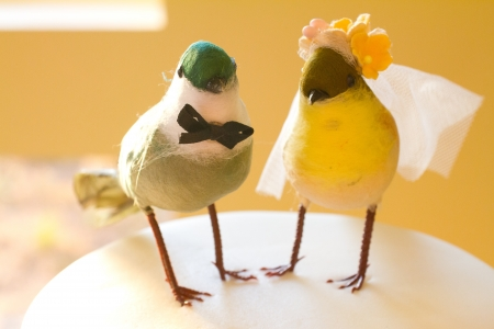 topper: Showing the saying birds of a feather stick together this cake topper has two birds representing the bride and groom.