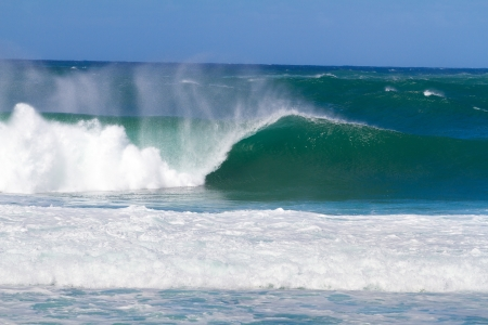 swell: Large waves break off the north shore of oahu hawaii during a great time for surfers surfing. These waves have hollow barrells and are located at pipeline by sunset beach.