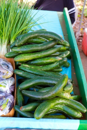english cucumber: Images from a farmers market in Hawaii showing tropical fruits or vegetables in simple photos with vibrant colors.