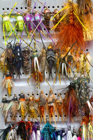 recreational pursuit: Nymphs and streamers are in this fly fishing box showing the variety of flies used to catch fish in this recreational pursuit